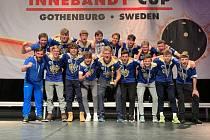 Lions ve Švédsku.