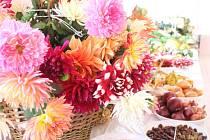 Žlutavu provoněla výstava jablek i zeleniny, hodnotily se i pálenky