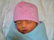 Viktorie  Barániová  ze Zlína se narodila 4.02.2012 s váhou 2150 g, velká 43 cm