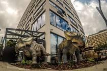 Dinosauři lákají na unikátní výstavu obrazů Zdeňka Buriana v Obchodňáku