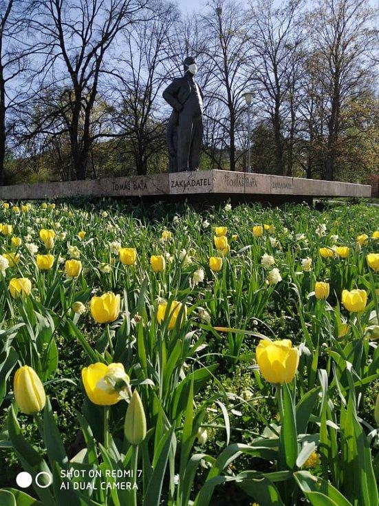 Jarní foto ze dne 16.04.2020 v Univerzitním parku ve Zlíně