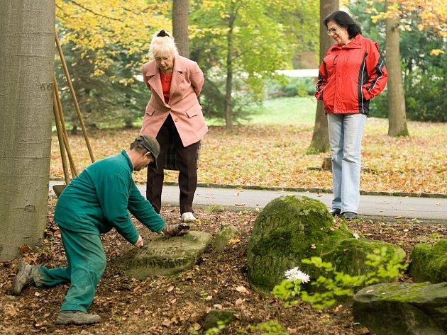 Úpravy židovského hřbitova.