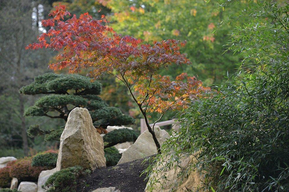 Podzim v japonské zahradě Mu-Shin.