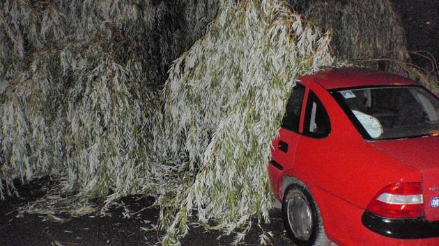 Bouřka lámala stromy