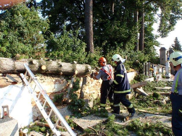 Hasiči odklízeli spadlé stromy po bouřce