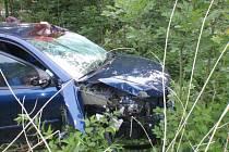 Sražená srna odlétla na protijedoucí osobní auto.