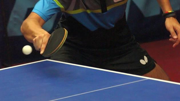 Dyjákovičtí sehrají turnaj O pohár starosty ve stolním tenise