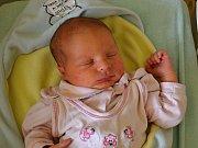 Tereza Horáčková z Březnice se narodila 12.2.2012 s mírou 50cm a váhou 3560 g