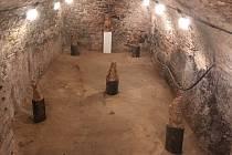 Sklepní prostory hradu v Malenovicích obývají plastiky sochařky Otilie Demelové Šuterové.