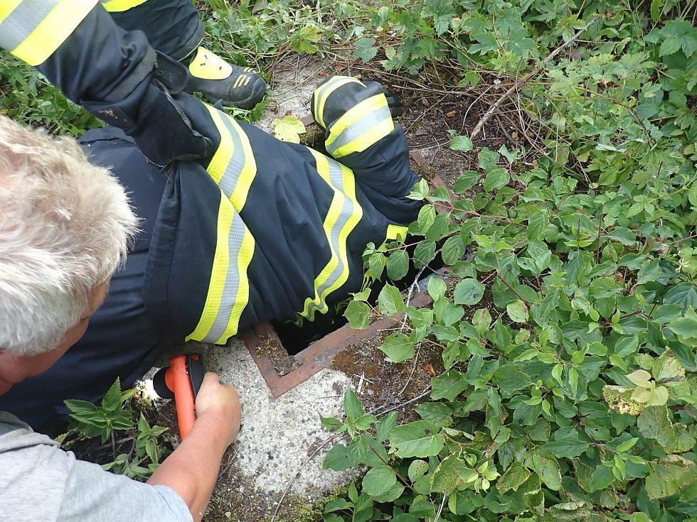 Srnu ze dna kanálu museli vyprostit hasiči