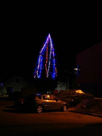 Vánoční strom vZubří roste vmístě nazývaném obecně Centrum. Je to smrk, který zde byl podle pracovníků radnice na stálo vysazen pravděpodobně už vosmdesátých letech minulého století. Staří odhadli na 30let.