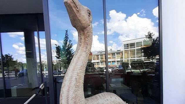 Dinosauři, ilustrační fotografie