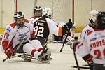 Druhé finále sledge hokejové ligy mezi Lapp Zlín a Pardubicemi v pátek večer opět vyhráli po velkém boji domácí (3:2 po sam. náj.). Zlínští tak získali třetí titul za sebou a slaví zlatý hattrick.