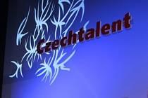 Czechtalent. Ilustrační foto