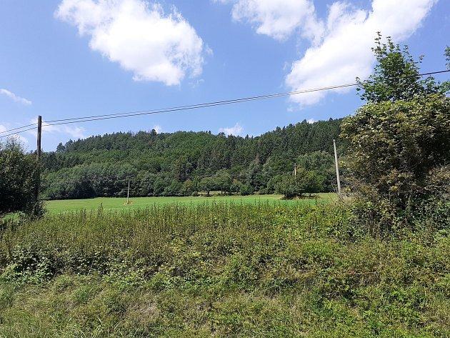 Okolní lesy obce Držková houbaře vždy lákaly.