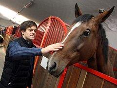 Natáčení seriálu Znamení koně II v hřebčíně v Napajedlích.