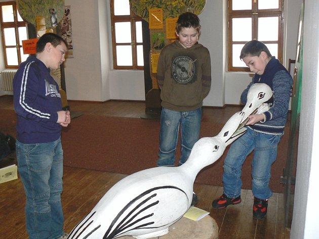 Interaktivní výstava Ptáci.