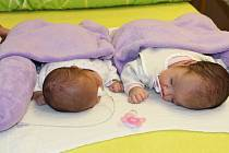 Ve čtvrtek 2. února 2017 slavnostně otevřeli nový pokoj pro nedonošené děti a jejich rodiče, a to v 7. patře tamního novorozeneckého oddělení.