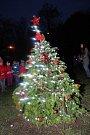 Slavnostní rozsvícení vánočního stromečku v kavárně Slunečnice ve Zlíně.