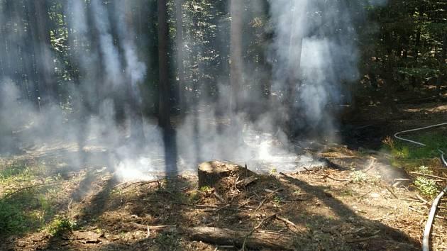 V Lukovečku na Zlínsku hořel lesní porost. Hasičům komplikoval zásah špatný terén i horko.