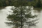 Vytrvalý déšť ve Zlínském kraji zaplavil cesty, zvedl hladiny řek. Řeka Morava Otrokovice.