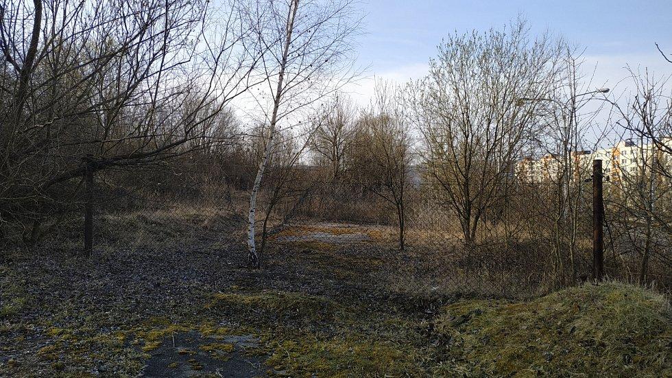 Místo, kde vznikne vodní biotop na Jižních Svazích ve Zlíně