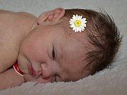 Karolínka Jančíková z Vizovic se narodila 10.4.2012, 51 cm a 3530 g