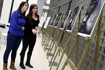 """Výstava mamografických snímků """" Vaše nejcenější foto"""" v Univerzitním centru ve Zlíně."""