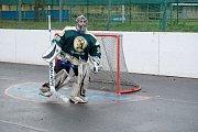 Silvestrovská hokejbalová exhibice v Malenovicích
