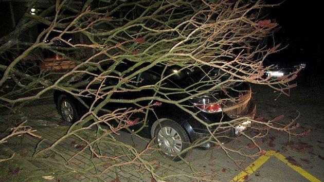Ve Zlínském kraji vichr vyvracel stromy