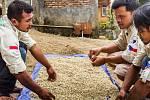 Třídění kávy Kukang týmem.