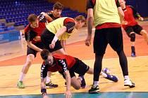 Příprava reprezentace házenkářů ve sportovní hale ve Zlíně.