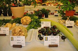 Okresní výstava ovoce a zeleniny v Machové