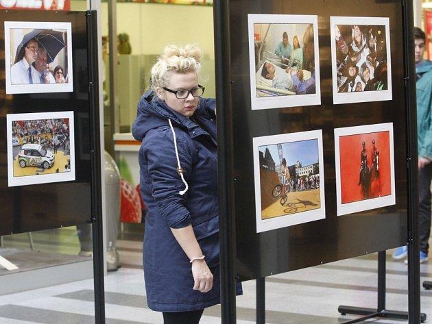 Výstava fotografií. Ilustrační foto