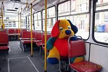Velkého plyšového psa našel řidič autobusu linky 33 před několika lety