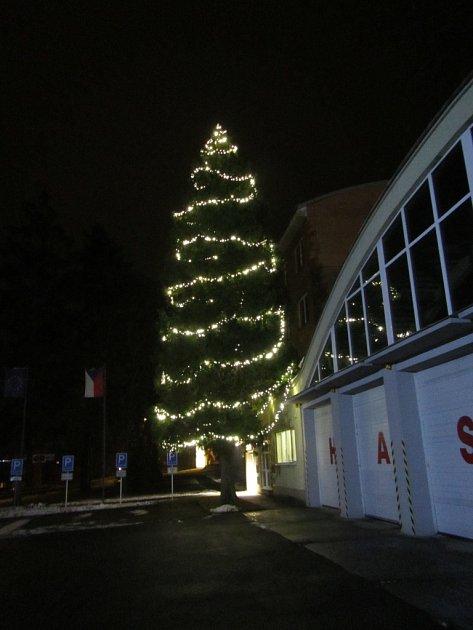 Vánoční strom Zlín - Přílucká