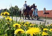 Průvod pohádkového krále a jeho podřízených přešel v sobotu 7. května odpoledne Hvozdnou na Zlínsku.