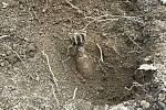 Dělostřeleckou minu našli 12. dubna v lese na Kocandě nedaleko sídliště Jižní Svahy ve Zlíně. Převzali si ji policejní pyrotechnici z expozitury ve Frýdku-Místku k likvidaci v trhací jámě.