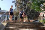 Pes upozorní nevidomého na začátek schodů tím, že se zastaví