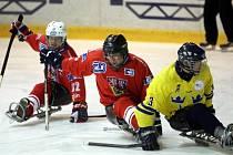 Mezinárodní sledge hokejový turnaj Baltaci cup 2O13 ve Zlíně.