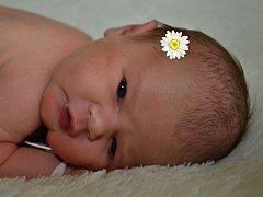 Eliška Večeřová ze Zlína se narodila 11.4.2012, 48cm a 3430 g