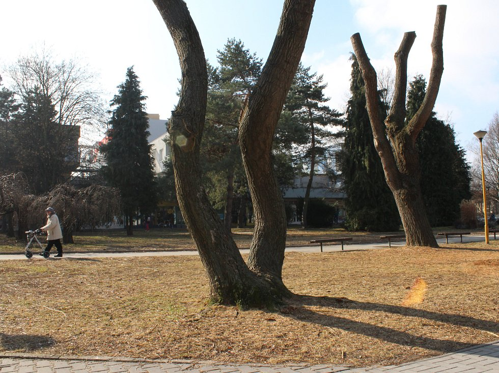 Park na sídlišti Trávníky v Otrokovicích se výhledově dočká úprav.