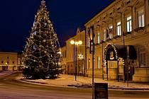 Jedenáctimetrovou jedli věnovala letos rožnovské radnici Božena Ryglová z městské části Tylovice. Ve městě tato tradice, kdy vánoční strom věnuje radnici někdo z místních lidí, trvá již patnáct let.