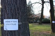 Aktivisté oblepili kmeny stromů nejednou emotivní výzvou