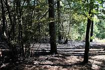 MÍSTO POŽÁRU. Hasičům při hašení lesa praskaly hadice.