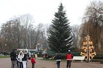 V ZOO Zlín rozsvítili vánoční strom.