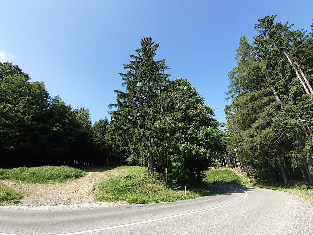 Lesy okolo obce Velíková: isem houbaři rádi chodí.