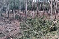 Následky bouře Sabine ve Zlínském kraji