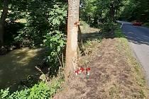 Místo tragické nehody u Brumova-Bylnice.