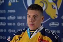 Robert Mamčics odehrál 11 zápasů za reprezentační mužstvo Lotyšska.